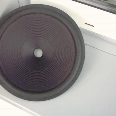 245 mm  Speaker cone                  MF 10 1